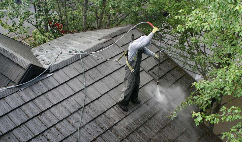 ROOF CLEANING/ MOSS TREATMENT & ROOF CLEANING/ MOSS TREATMENT - Finnmark Property Services memphite.com